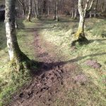 Finnich Glen Path