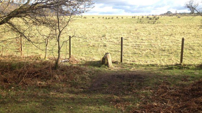 Fnnich Glen Stone