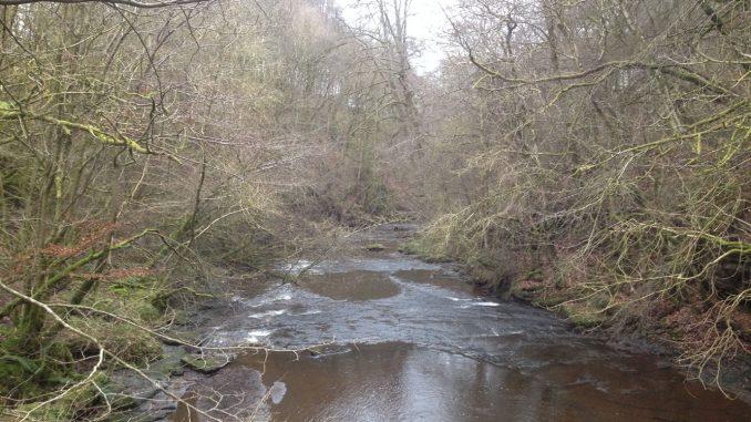Rotten Calder River