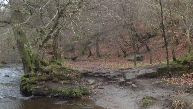 Calderglen Country Park Not Camp